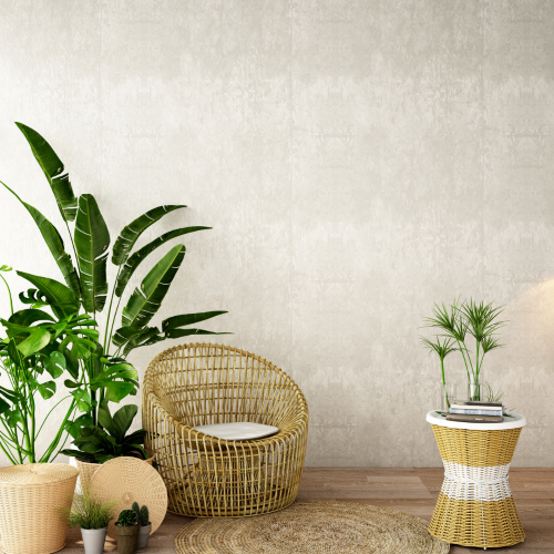 Les plantes dépolluantes, mythe ou réalité ?
