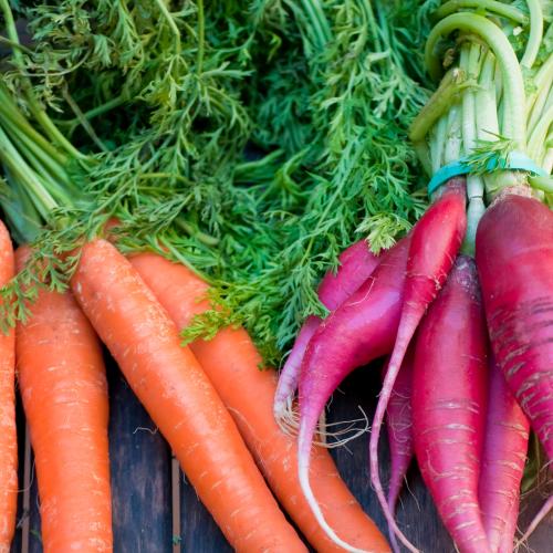 Lutter contre le gaspillage alimentaire en cuisinant les fanes de légumes