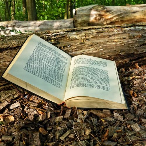 Une sélection de 2 livres pour l'automne